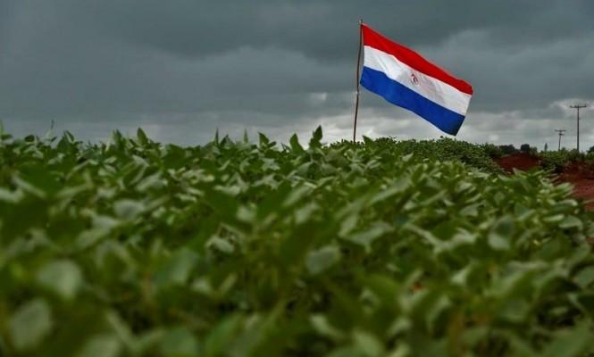soja Paraguai