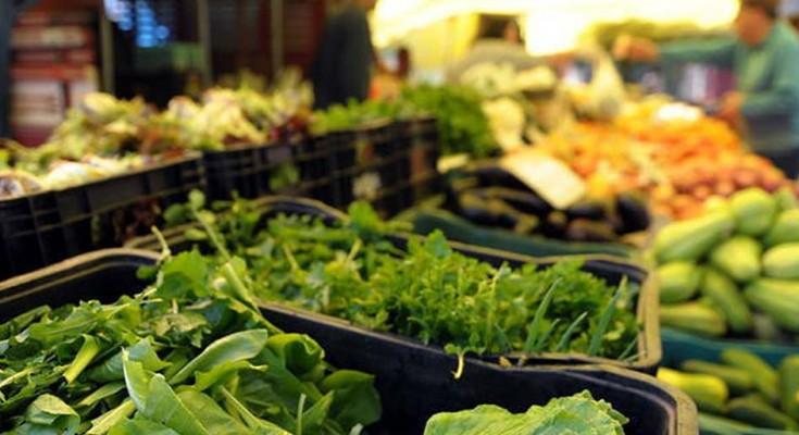 verdura-WEB