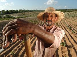 Trabalhador RuralCaraubas - Rio Grande do Norte