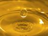 biodiesel eu
