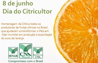 dia_citricultor01