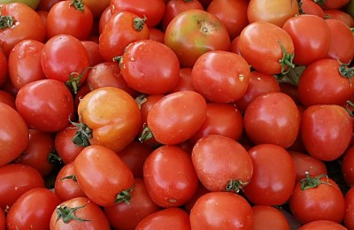 foto-tomate