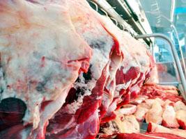 carneam argentina