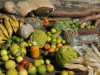 00ALIMENTOS_agricultura_FAMILIAR