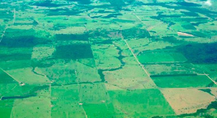 foto-Amazônia-web