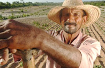 agricultor-webb