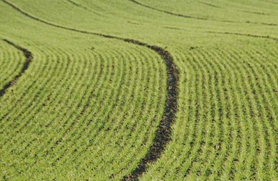 acordo-agricultura-web