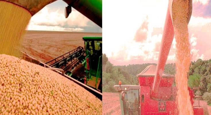 foto-colheita-milho-e-soja-web