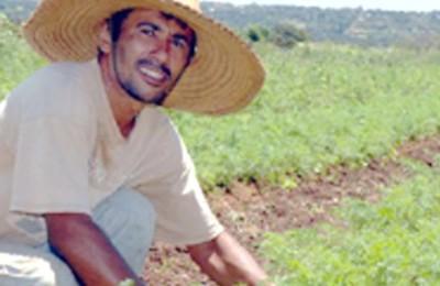 AGRICULTURA-FAMILIAR-WEB