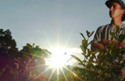 agricultor-webbb