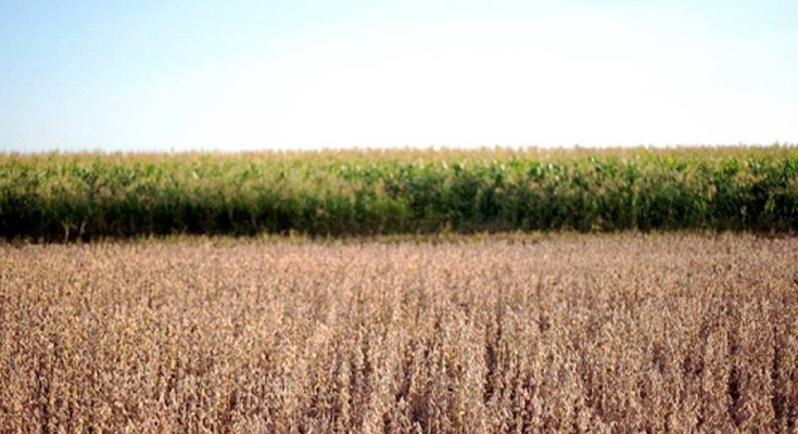 agricultura-legal-web