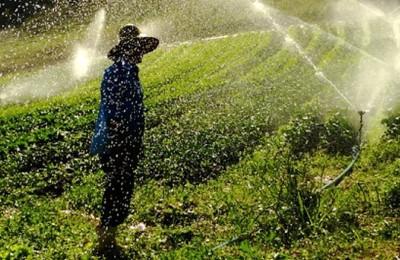 agricultura-nova-web