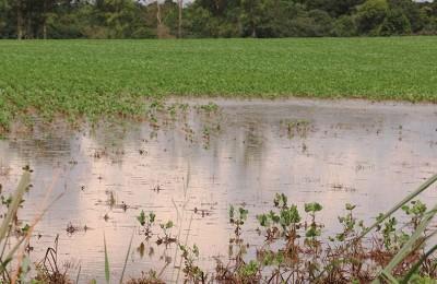 Lavouras ainda permaneciam alagadas uma semana após o temporal da metade de dezembro.