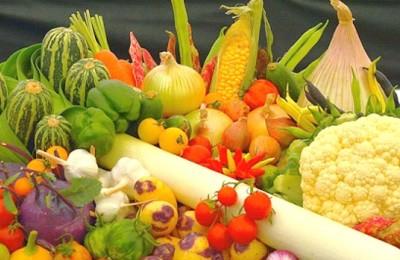 frutas-verduras-webb