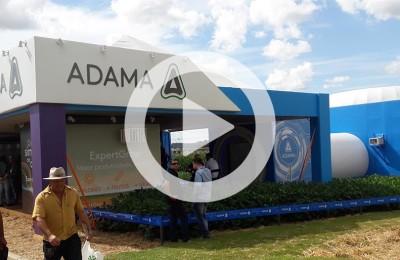 ADAMA-WEB