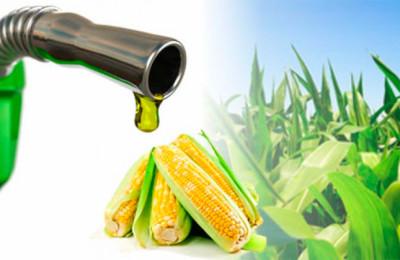etanol_maiz
