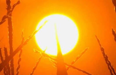 temperaturas-altas-calor