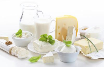Lácteos Produção