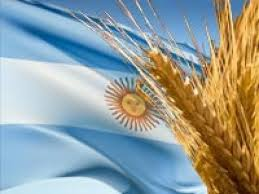 Trigo Argentino