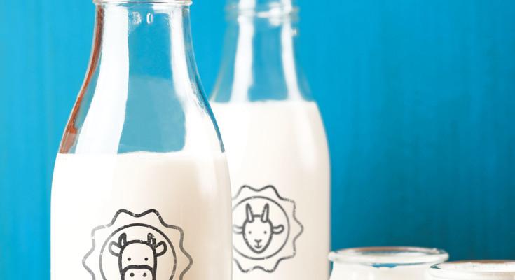 leite-de-cabra-e-de-vaca-integral