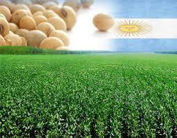 Soja Argentina