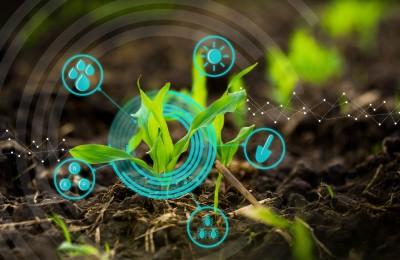 agricultura-digital