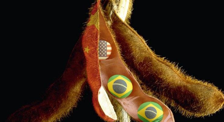 soja-brasil-china-eua2