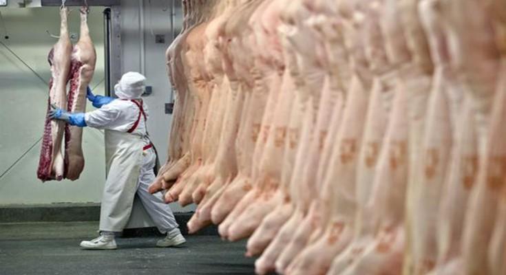 Carregamento de carne suína