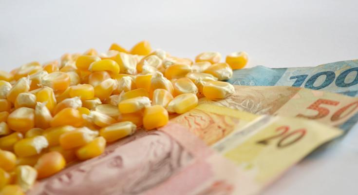 grãos_milho_mercado_dinheiro-7-1