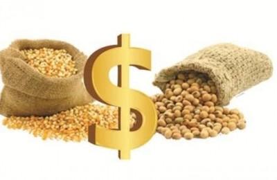 valor-milho-e-soja