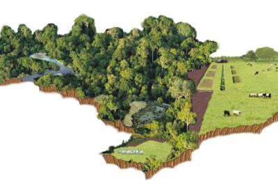 Brasil e Proteção Ambiental