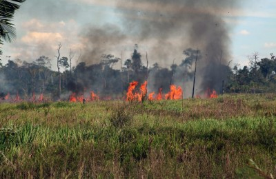 queimadas-rondonia