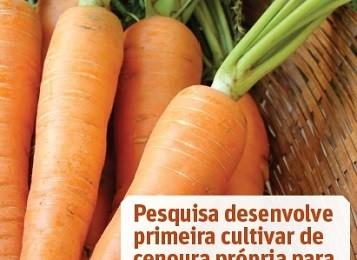Cenoura - Capa