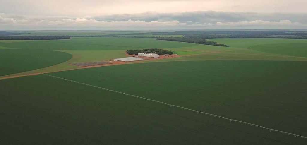Na fazenda da família Vigolo, a Fockink está presente na termometria e aeração, energia fotovoltaica e sistema de irrigação.